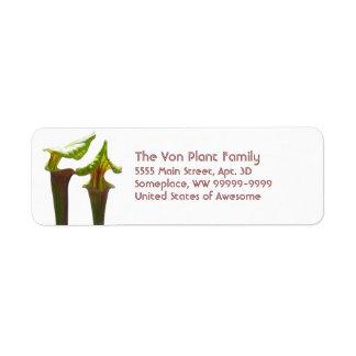 Carnivorous Pitcher Plants Label