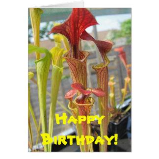Carnivorous Plant Birthday Card