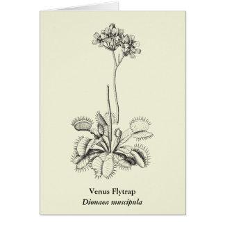 Carnivorous Plant Botanical Art Card