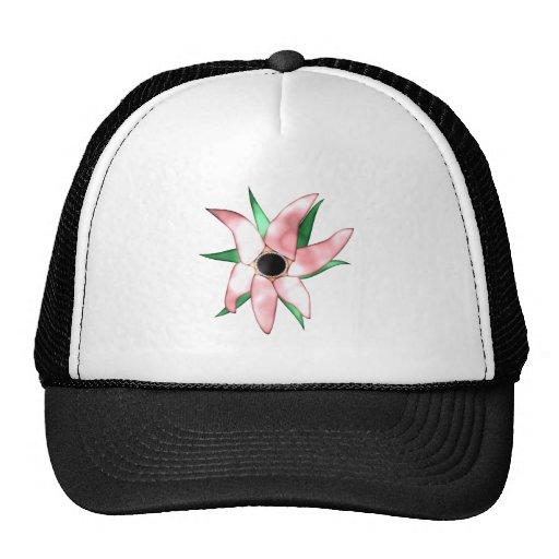 carnivorous plant carnivorous plans hat
