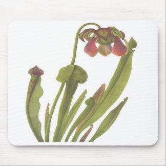 Carnivorous Plant - Sarracenia catesbaei Mouse Pads