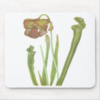 Carnivorous Plant - Sarracenia drummondii Mouse Mat
