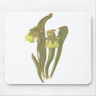 Carnivorous Plant - Sarracenia minor Mouse Pad