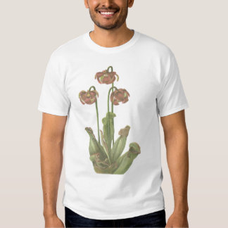 Carnivorous Plant - Sarracenia purpurea T-Shirt
