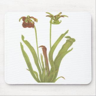Carnivorous Plant - Sarracenia rubra Mouse Pads
