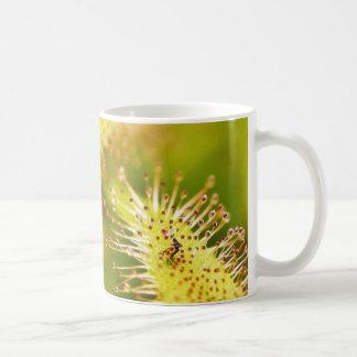 Carnivorous Plants Coffee Mug