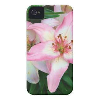 """""""Carole's Flowers"""" collection iPhone 4 Case"""