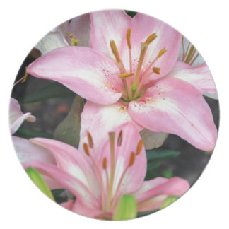 """""""Carole's Flowers"""" v collection Plate"""