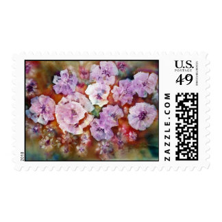 Carolina Beauity Stamps