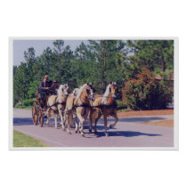 horses, palomino, north, carolina, carriage, equestrian, Cartaz/impressão com design gráfico personalizado
