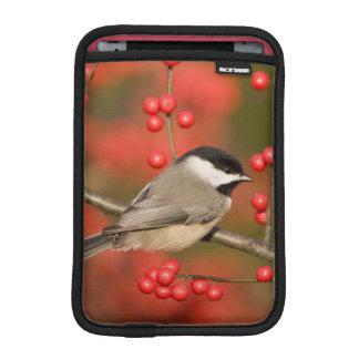 Carolina Chickadee on Common Winterberry bush Sleeve For iPad Mini