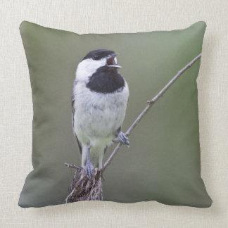 Carolina chickadee singing pillow