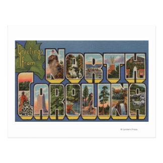 Carolina del Norte (Capital del Estado/flor) Postales