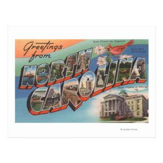 Carolina del Norte (flor de estado/pájaro) Postal