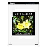 Carolina del Sur Jessamine amarillo