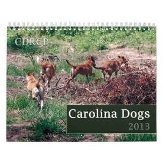 Carolina Dog Calendar 2013