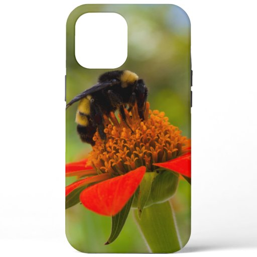 Carolina Dreaming Bumblebee On Mexican Sunflower  iPhone 12 Pro Max Case