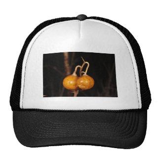 Carolina Horsenettle Trucker Hat