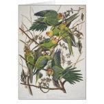 Carolina Parakeet, from 'Birds of America', 1829 Greeting Card