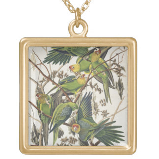 Carolina Parakeet, from 'Birds of America', 1829 Gold Plated Necklace