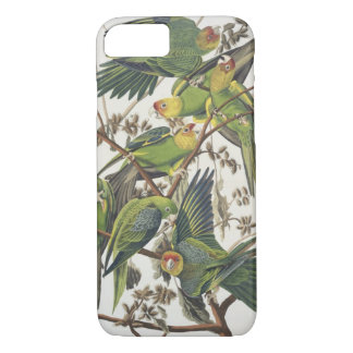 Carolina Parakeet, from 'Birds of America', 1829 iPhone 8/7 Case