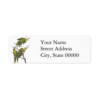 Carolina Parakeet, John Audubon Label