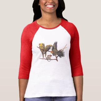 Carolina Parakeet Trio Women's Raglan T-Shirt