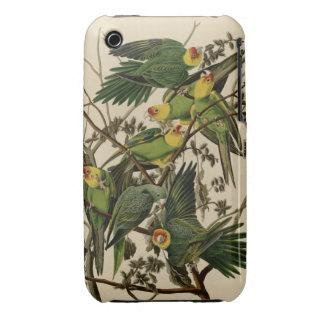 Carolina Parrot iPhone 3 Cover