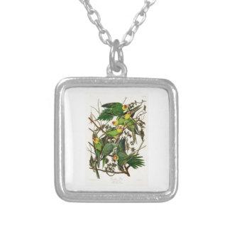 Carolina Parrot John Audubon Birds of Ameria Square Pendant Necklace