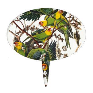 Carolina Parrot - John James Audubon (1827-1838) Cake Topper