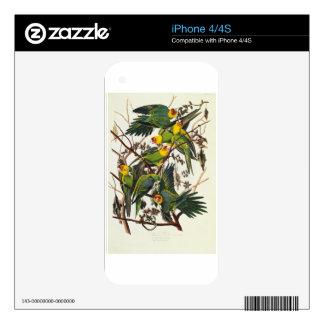 Carolina Parrot - John James Audubon (1827-1838) iPhone 4 Decals