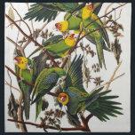 """Carolina Parrot - John James Audubon (1827-1838) Napkin<br><div class=""""desc"""">Carolina Parrot - John James Audubon (1827-1838).  The Birds of America. carolina, parrot, john, james, audubon, green, natural, the, birds, america</div>"""