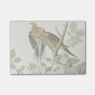 Carolina Pigeon John James Audubon Birds Post-it® Notes