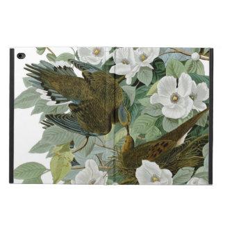 Carolina Pigeon John James Audubon Birds Powis iPad Air 2 Case