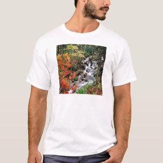 Carolina Stream T-Shirt