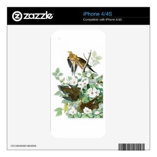 Carolina Turtle Dove John Audubon Birds of America Skin For iPhone 4S