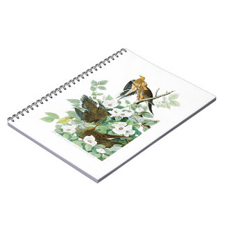 Carolina Turtle Dove John Audubon Birds of America Spiral Notebook