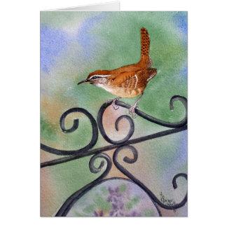 Carolina Wren Card