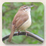 "Carolina Wren Coaster<br><div class=""desc"">Enjoy your drink with the help of a cute Carolina Wren!</div>"