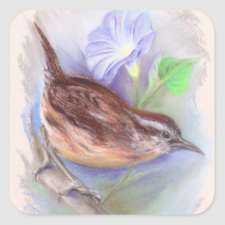 Carolina Wren with Morning Glory Flowers Square Sticker