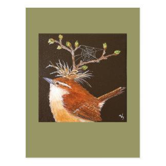Carolina wren with web hat postcard