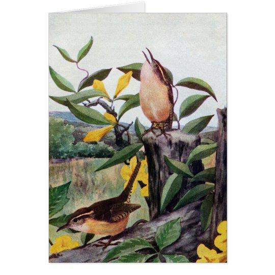 Carolina Wrens and Yellow Jessamine Card