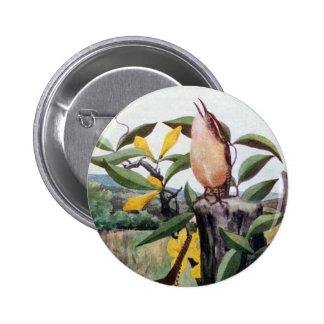 Carolina Wrens and Yellow Jessamine Pinback Button