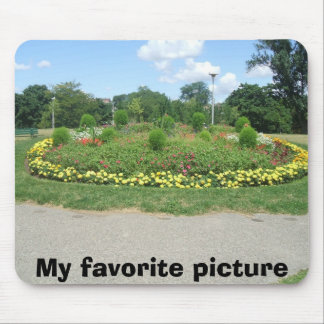 carols pic's1 022, My favorite picture Mouse Pad
