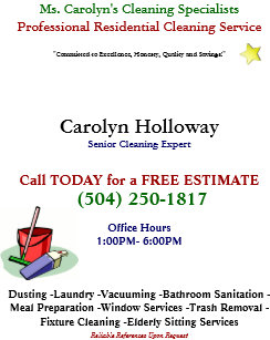 carolyn holloway sample flyer cleaning services flyer