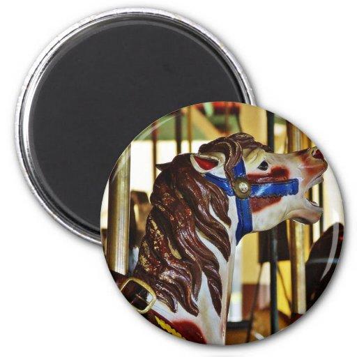 Carousels Horses Rides Amusement Parks Fridge Magnet