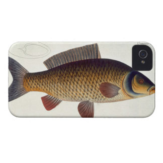Carp (Cyprinus Carpio) plate XVI from 'Ichthyologi Case-Mate iPhone 4 Case
