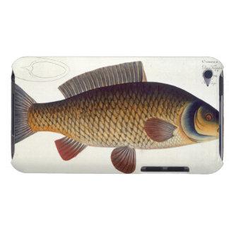 Carp (Cyprinus Carpio) plate XVI from 'Ichthyologi iPod Touch Case-Mate Case