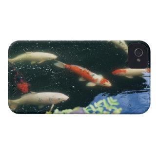 Carp iPhone 4 Case-Mate Case