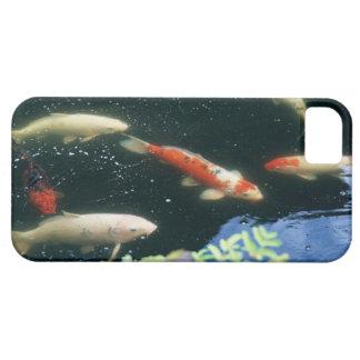 Carp iPhone SE/5/5s Case